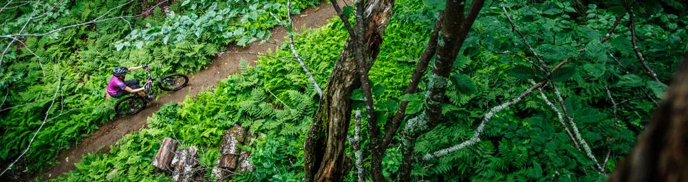 Shooting pour TREES Mountain Apparel